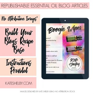 free blog article boogie wipes